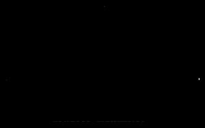 translamp_logo