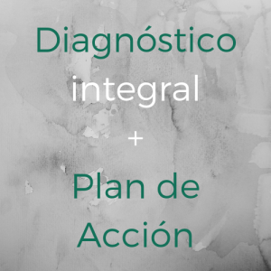 Diagnostico y plan de accion