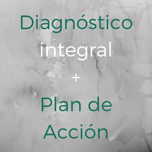 Diagnostico y plan de accion
